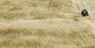 поле пшеницу трактора Стоковые Изображения