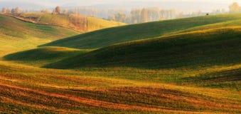 Поле Рассвет осени в поле Тихое утро в живописном поле Стоковое Изображение