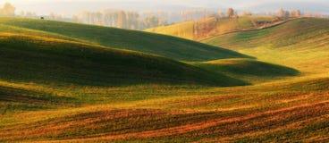 Поле Рассвет осени в поле Тихое утро в живописном поле Стоковые Фото