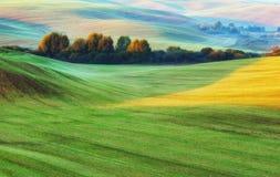 Поле Рассвет осени в поле Тихое утро в живописном поле Стоковые Фотографии RF