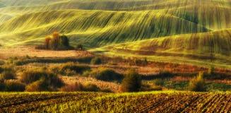 Поле Рассвет осени в поле Тихое утро в живописном поле Стоковая Фотография