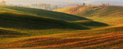 Поле Рассвет осени в поле Тихое утро в живописном поле Стоковые Изображения