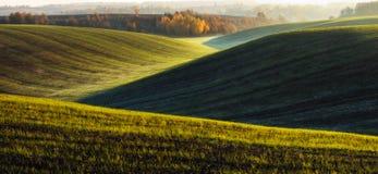Поле Рассвет осени в поле Тихое утро в живописном поле Стоковое Фото