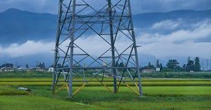 Поле риса в сельской местности в Японии, 08 26 2018 Стоковая Фотография