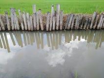 Поле риса с rill стоковая фотография rf