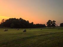 Поле сена на заходе солнца стоковое изображение rf