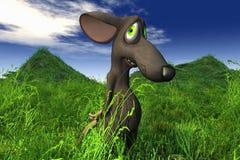 поле смотря мышь застенчивую Стоковые Изображения