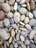 Поле сортированного естественного камня сада Стоковые Изображения RF