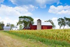 Поле с сельскохозяйственными строительствами Стоковые Изображения