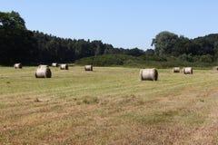 Поле с bales сена Стоковое Фото
