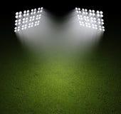 Поле травы с фарами Стоковое Изображение RF