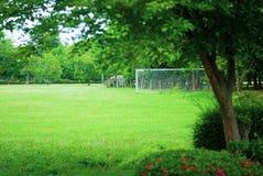 Поле травы футбола которое холодно и приятно с малым заводом стоковое изображение