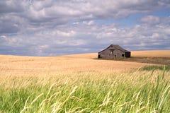 поле фермы амбара деревенское Стоковая Фотография
