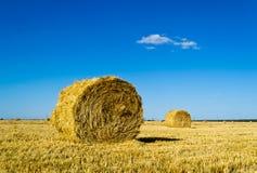Поле фермы с bales сена Стоковое Изображение RF
