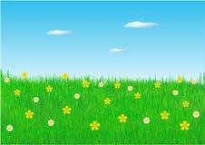 поле цветет весна иллюстрация штока