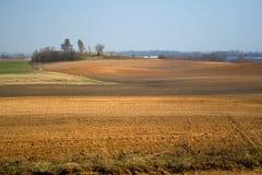 поле Стоковая Фотография