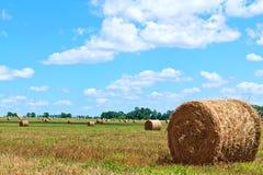 поле bales сжало сторновку Стоковые Фото