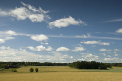 поле dalarna стоковое фото rf