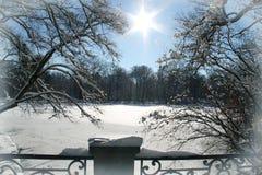 Поле Snowy   Стоковые Фотографии RF