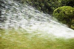поливать воду Стоковое Изображение