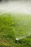 поливать травы Стоковые Изображения RF