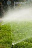 поливать травы Стоковые Фото