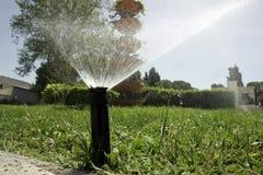 поливать травы Стоковое Изображение