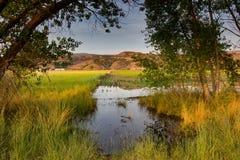 Полив поля в июле стоковое фото