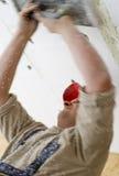 полистироль потолка стоковое изображение rf