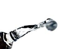 политая вода Стоковая Фотография RF