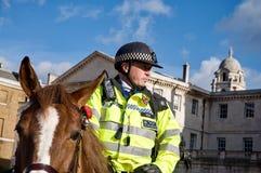 Полицейский на лошади Стоковые Изображения RF
