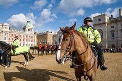 Полицейский на лошади Стоковые Изображения