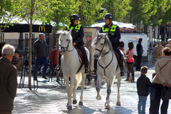 полиции madrid лошади Стоковые Фотографии RF