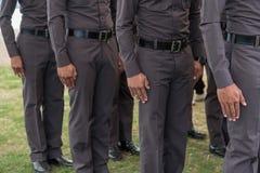 Полиция гребет Стоковое Изображение RF