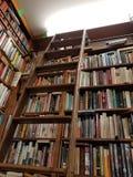 Полки книг в библиотеке стоковые фотографии rf