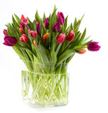 полная ваза тюльпанов Стоковое Фото
