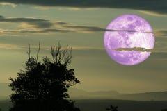 полная луна вороны назад на облаке и горе силуэта на ночном небе стоковое изображение