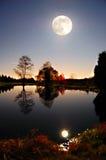 полная луна ландшафта над прудом Стоковые Изображения