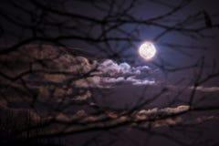 Полнолуние в облачном небе на ноче Стоковое Изображение RF