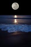 полнолуние Стоковое Фото