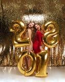 Полнометражный портрет 2 жизнерадостных счастливых женщин Стоковые Фото