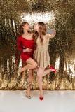 Полнометражный портрет 2 красивых жизнерадостных женщин Стоковое фото RF