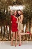 Полнометражный портрет 2 радостных привлекательных женщин Стоковая Фотография