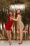 Полнометражный портрет 2 усмехаясь веселых девушек Стоковое Фото