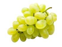полно белизна изолированная виноградиной Стоковое Изображение