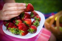полные strawberies плиты Стоковые Изображения RF