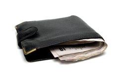 полный бумажник Стоковые Фотографии RF