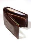 полный бумажник Стоковое Изображение