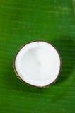 Половина кокоса на предпосылке Стоковые Изображения