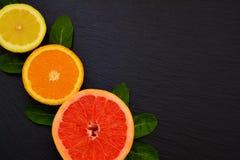 Половина сочных зрелых grapfruit, апельсина и лимона с листьями мяты Стоковые Изображения